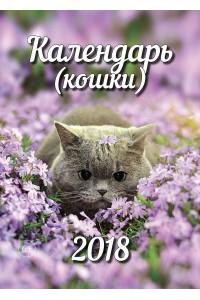 Эрудит. Календарь (кошки) - 2018 (бумажная версия-оригинал)