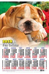 17001 Бульдог - 2018 (Листовой настенный календарь формат А3)