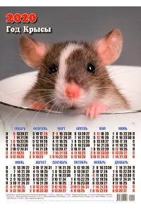 20001 Карл - 2020 (Листовой настенный календарь формат А3)