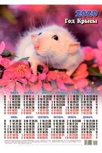 20002 Стюарт - 2020 (Листовой настенный календарь формат А3)