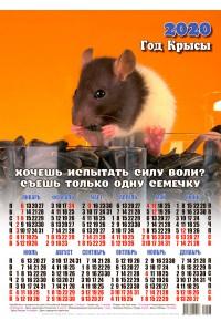 20003 Сила воли - 2020 (Листовой настенный календарь формат А3)