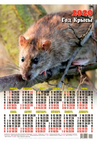 20005 Разведчик - 2020 (Листовой настенный календарь формат А3)