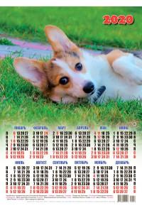 20018 Ману - 2020 (Листовой настенный календарь формат А3)