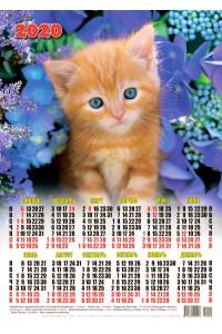 20019 Рыжик - 2020 (Листовой настенный календарь формат А3)