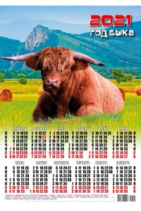 21004 Дикий бык - 2021 (Листовой настенный календарь формат А3)