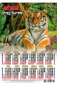 22003 Мачо - 2022 (Листовой настенный календарь формат А3)
