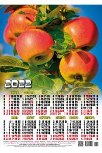 22022 Яблоки - 2022 (Листовой настенный календарь формат А3)