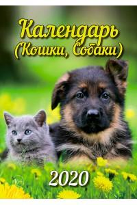 Эрудит. Календарь (Кошки, Собаки) - 2020 (Формат А4, настенный)
