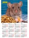 00004 Эрудит. Денежный календарь - 2020 (Формат А4, настенный)