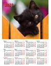 00006 Эрудит. Календарь (Кошки, Собаки) - 2020 (Формат А4, настенный)