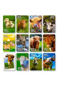 Набор №2 - (12 видов по 10 шт) - Карманные календари. Символ года (Быка) - 2021