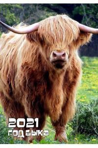 2021-027 Карманный календарь. Лохмач - 2021