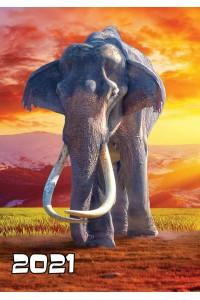 2021-009 Карманный календарь. Слон - 2021