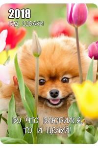 к015 Тюльпаны - 2018 (карманный календарь)