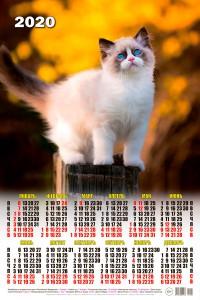 01001 Сиамец - 2020 (Листовой календарь А2)
