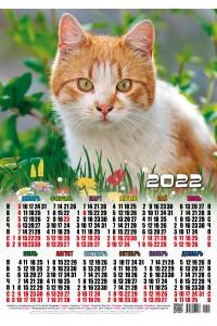01002 Рыжий - 2022 (Листовой календарь, формат А2)