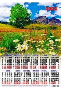 00019 Ромашки - 2021 (Листовой календарь А2)