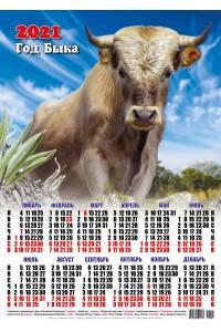 00001 Басаро - 2021 (Листовой настенный календарь формат А2)