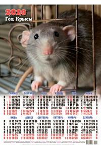 00001 Юджин - 2020 (Листовой настенный календарь формат А2)