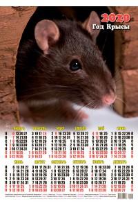 00002 Дамбо - 2020 (Листовой настенный календарь формат А2)