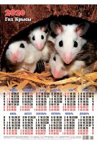 00005 Семейка - 2020 (Листовой настенный календарь формат А2)