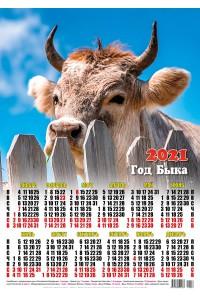 00006 Любопытный - 2021 (Листовой настенный календарь формат А2)