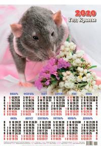 00007 Сильвия - 2020 (Листовой настенный календарь формат А2)