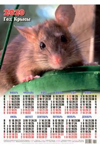 00008 Хитрюга - 2020 (Листовой настенный календарь формат А2)