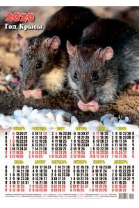 00009 Подружки - 2020 (Листовой настенный календарь формат А2)
