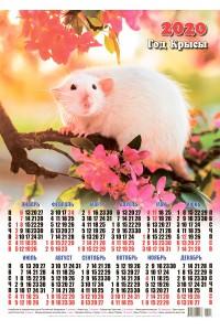 00013 Стефан - 2020 (Листовой настенный календарь формат А2)