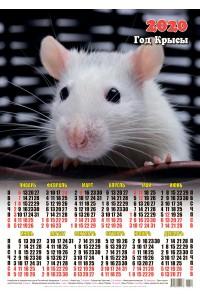 00014 Жозефина - 2020 (Листовой настенный календарь формат А2)